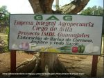 Entra en funcionamiento en Majagua proyecto Guamajales